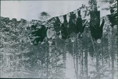 People walking together in forest during Winter war.