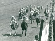 Lester Piggott at The Minstrel wins before Hot Grove and Blushing Groom at Derby on Epsom