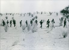 Soldiers are walking through a path, war weapon in their hand.