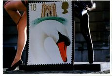 Stamps: British Commonwealth: Swans.