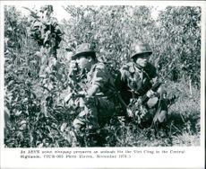 Vietnam: Defense. Troops