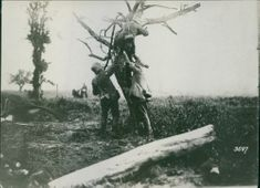 Two soldiers helping another soldier to climb up on the tree.