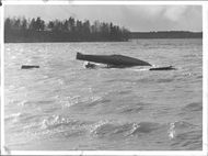 The pontoons and one wing tip are all seen above the water surface of the ambulance plane that occurred at Hägernäs - 31 March 1938