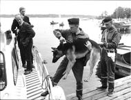 A police dog carried on board a police patrolboat to the troubled archipelago.