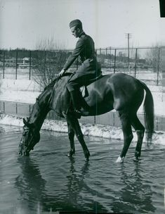 Thanks to the flood at Gärdet, there is good opportunity for a military horse to extinguish the thirst. - 2 April 1940