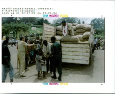 The Rwandan War:Red cross workers delivery rare food from a truck.