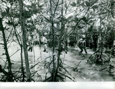 Indonesian army on a war scene. June 25, 1962