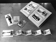 Red Cross postcard exhibition with various curiosities