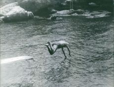 Nubar Sarkis Gulbenkian jump diving into water to swim.