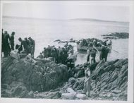 Some of men, safely ashore with their bundles, help their comrades over the slippery rocks as another boatload arrives.