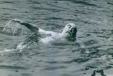 Nubar Gulbenkian doing a backstroke swimming technique, 1966.