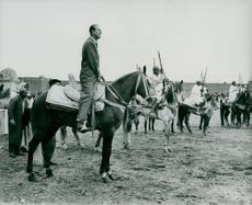 Prince Philip to horse before participating in a race