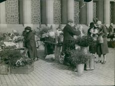 People buying flowers from flower market.