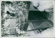 A view of tunnel inside of the forest in snow during First World War, 1940.