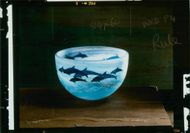 Crockery: Dolphin Bowl