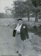 Evert Taube standing in front of the sheep. 1957.