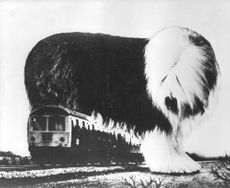Early film effects where a giant dog is standing over a train.