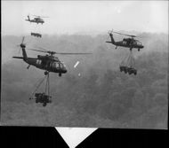 American military helicopters on exercise.