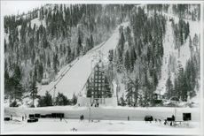 Great jumpback in Squaw Valley. In the middle there is the monument where the Olympic fire should burn during the games.