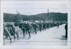 Soldiers marching in street with their horses during Norwegian war.