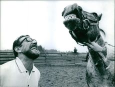 Man looking up towards the horse and copying the expression. 1967