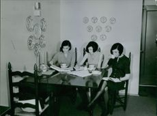 Three women studying together and having tea.  1964