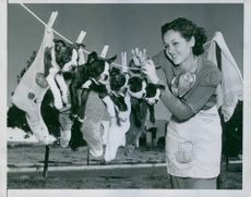 Miss Nicky Flanagan hangs these puppies on the line after a good shampoo.