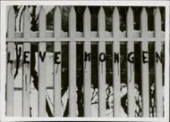 Live the king written on fence,