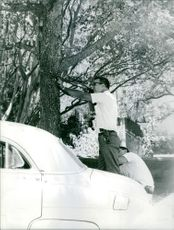 Men standing and targeting with gun and hidden behind the tree.