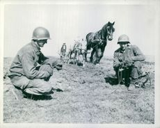 Signal Corps soldiers of the U.S. Army repair wires in a field being furloughed by a French farmer.