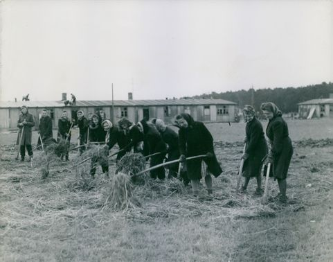 Soviets Give Land to German Peasants.