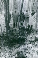 A family standing in the forest and looking the burial.