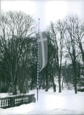 A potrait of flag pole in snow. 1961.