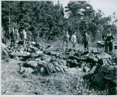 Men standing and looking at dead bodies of soldiers lying down.