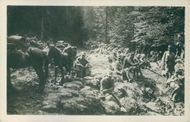 Soldiers gathered in the forest while resting during the WWI.