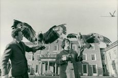 Mr Allan Oswald and his wife holding the eagles.