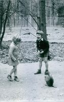 A boy and a girl playing with a monkey.