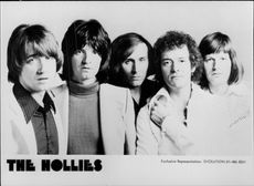 Pop Hops The Hollies