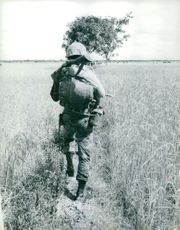 Vietnamese soldier in the farm.