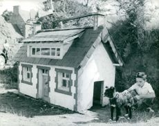 Vintage photo of a large dog house, beside it is a young boy and its dog.