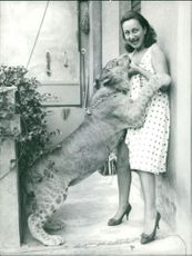 Woman playing with lioness.