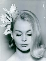 1966  A portrait of beautiful lady.