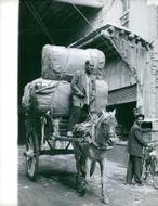 Man carrying luggage on a horse cart and other man looking at him.