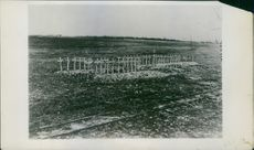 Photo of the American cemeteries in France where the fighters for democracy lie buried. 1927.