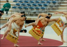 Japanese summons open the opening of the Winter Olympics in 1998