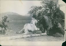 Men caught a white horse and tied with rope.