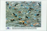 London Triathlon. The triathleters begin the swimming moment