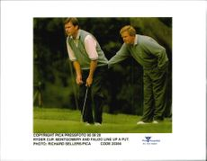 Golf players Nick Faldo and Lee Montgomery are preparing a putt under the Ryder Cup in 1995