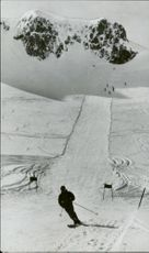 The piste where the alpine branches will be settled.