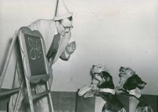 Artists at the Soviet Union's circus